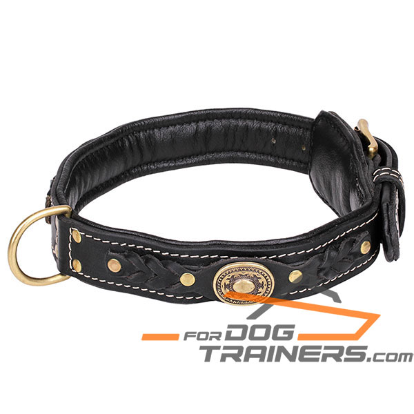 Adorned leather dog collar with black padding