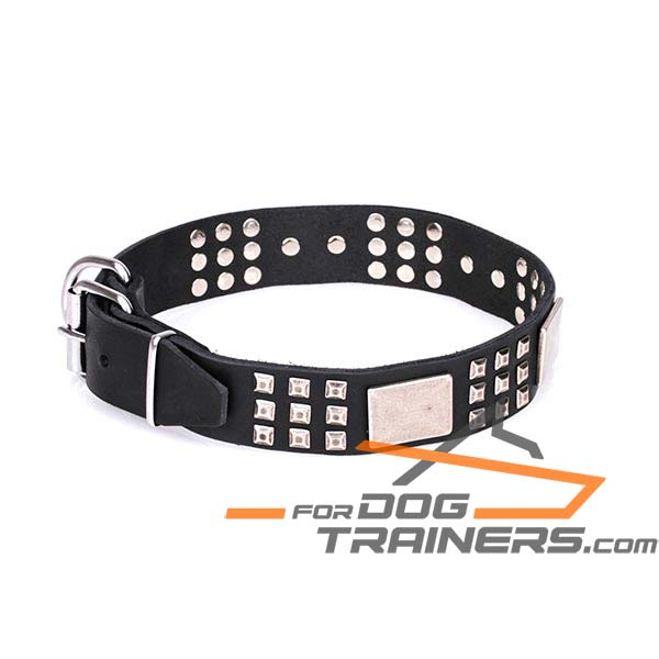 Strong Dog Collar Made of Flexible Leather