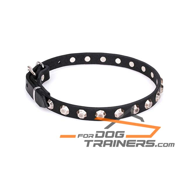 Comfortable leather dog collar