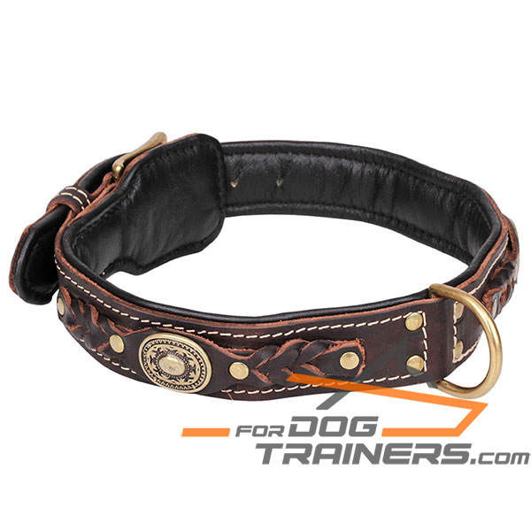 Adorned with brass studs brown leather dog collar