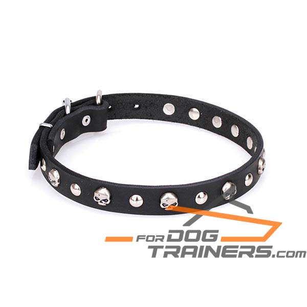 Adorned leather dog collar
