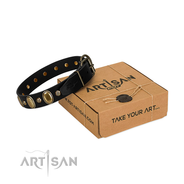 Fashionable black leather dog collar with adornments