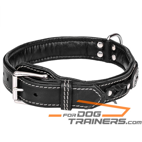 Black leather dog collar for walking