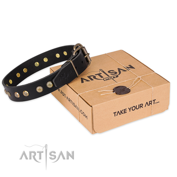 Studded black leather dog collar