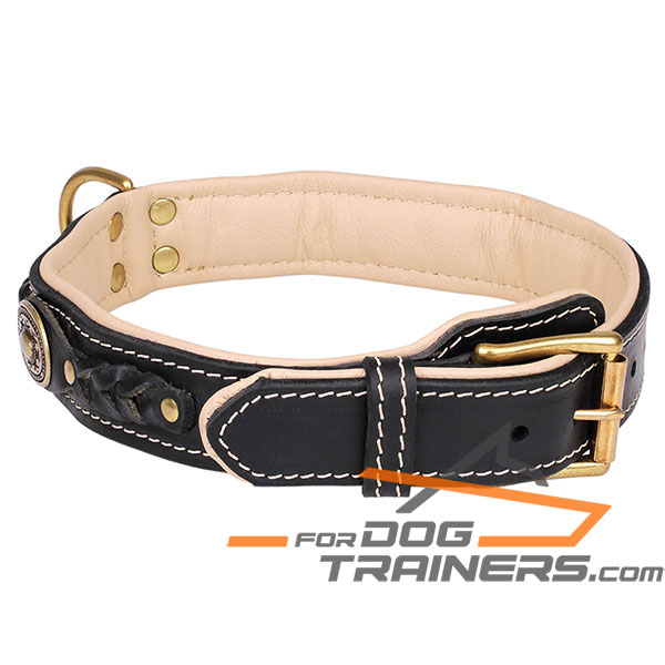 Black Leather dog collar with brass plated hardware