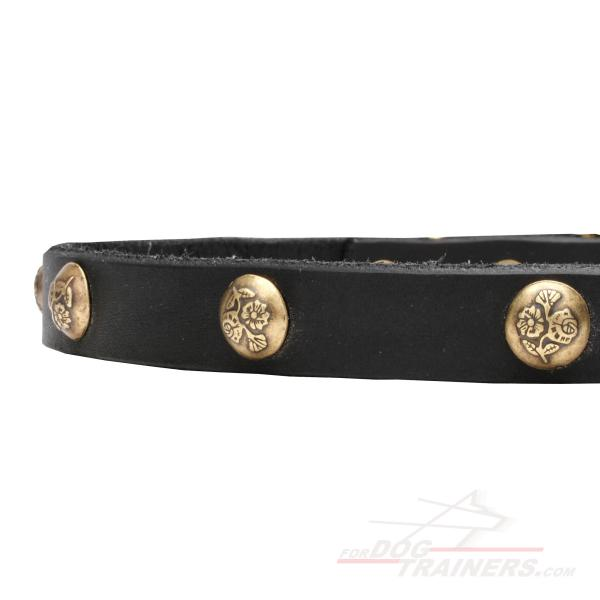Leather dog collar with stamped brass adornment