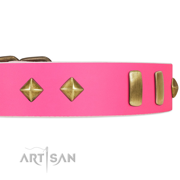 Unique pink leather dog collar with posh-looking plates and studs