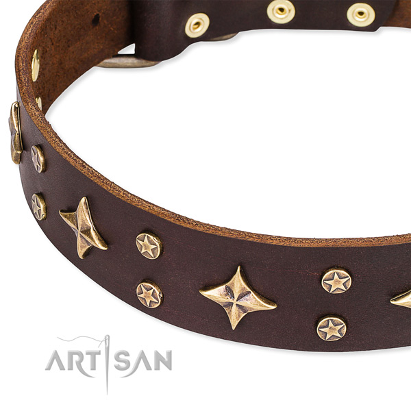 Easy to adjust brown leather dog collar