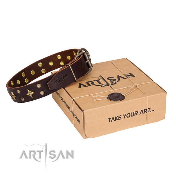 Exclusive brown leather dog collar with decorations