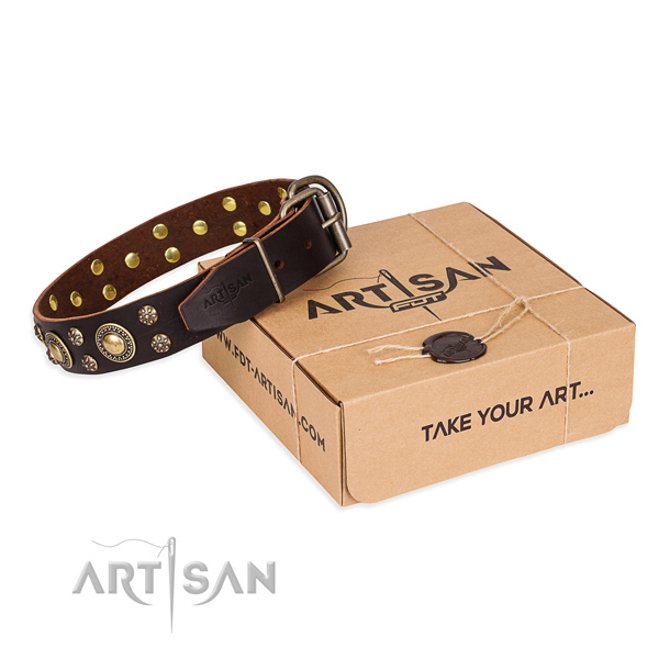 Convenient brown leather dog collar