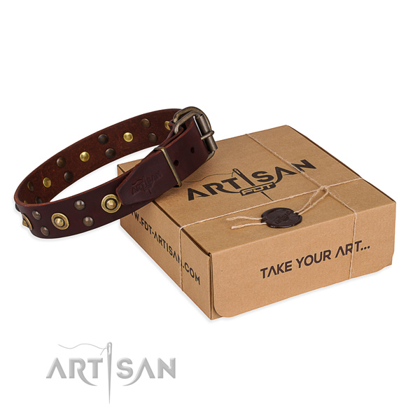 Brown leather dog collar for easy walking