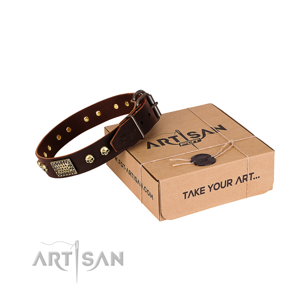 Stylish brown leather dog collar