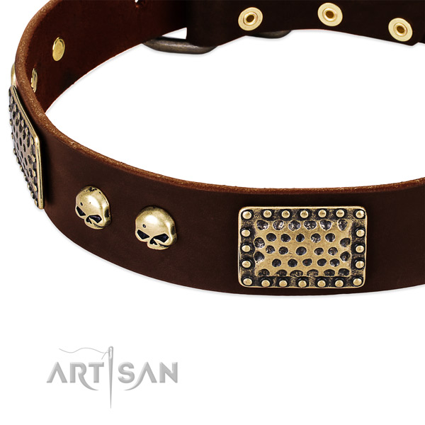 Elegant brown leather dog collar with decorations