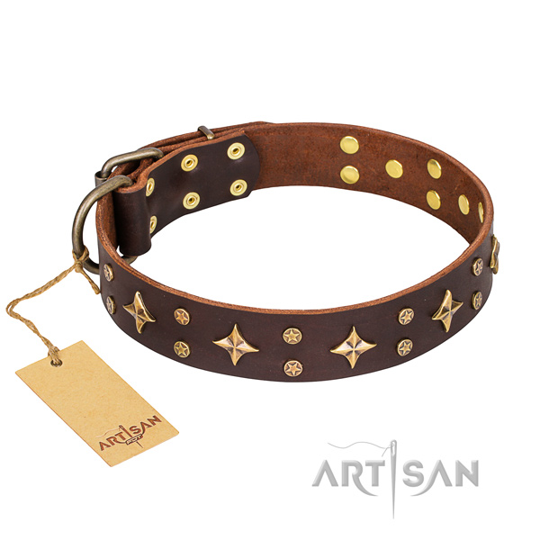 Decorated leather dog collar for stylish walking