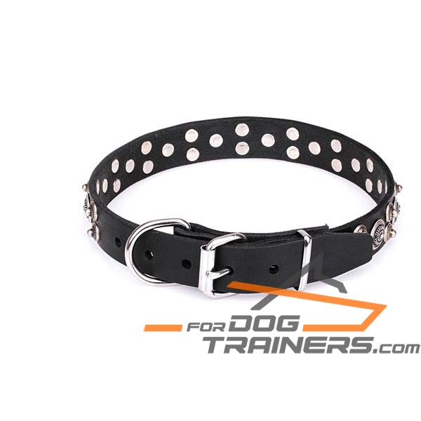 Sturdy and Resistant Leather Dog Collar
