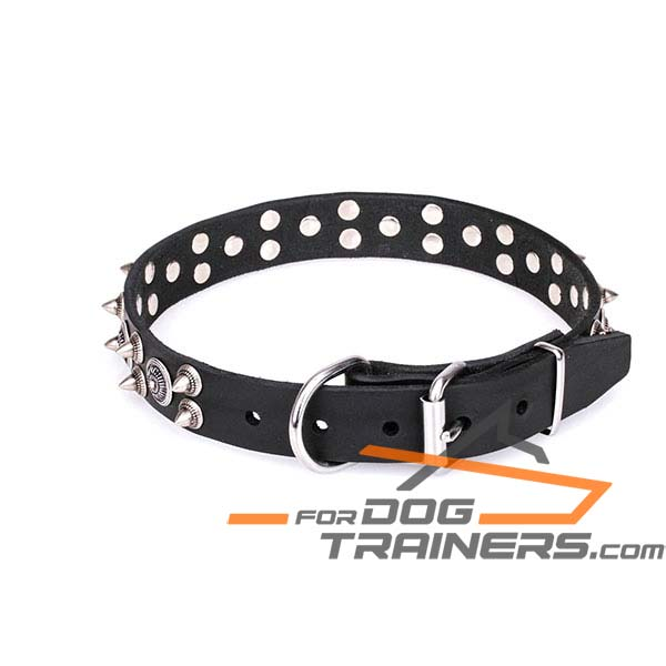 Comfortable buckled leather dog collar