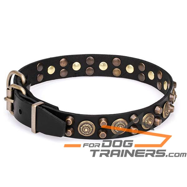 Stylish Dog Collar with Traditional Buckle