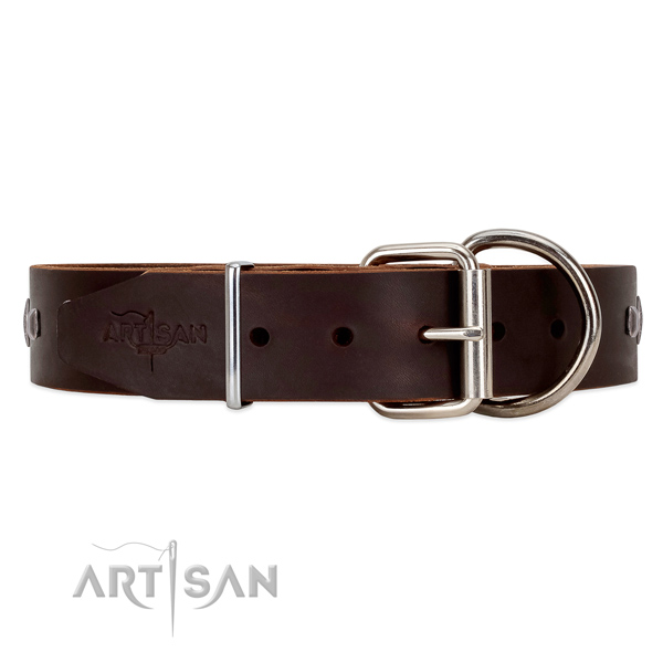 Strong leather dog collar with chrome plated hardware
