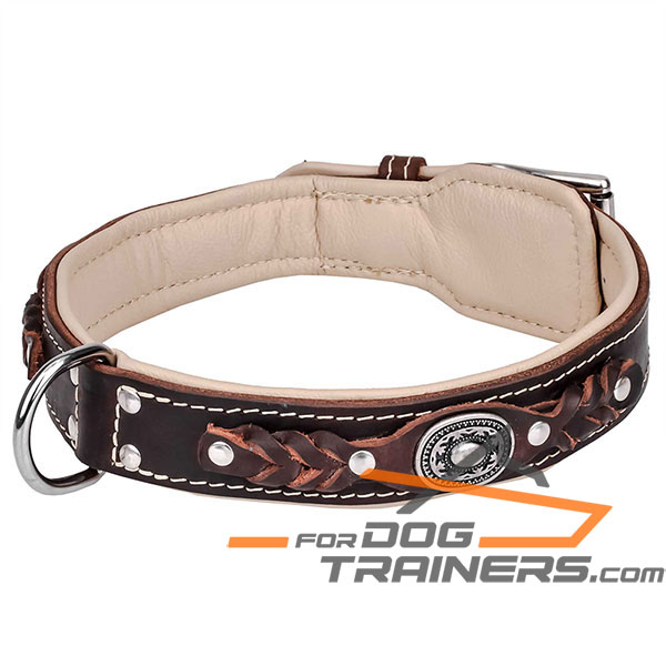 Adorned with studs brown leather dog collar