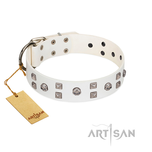 Stylish white leather dog collar with studs and skulls