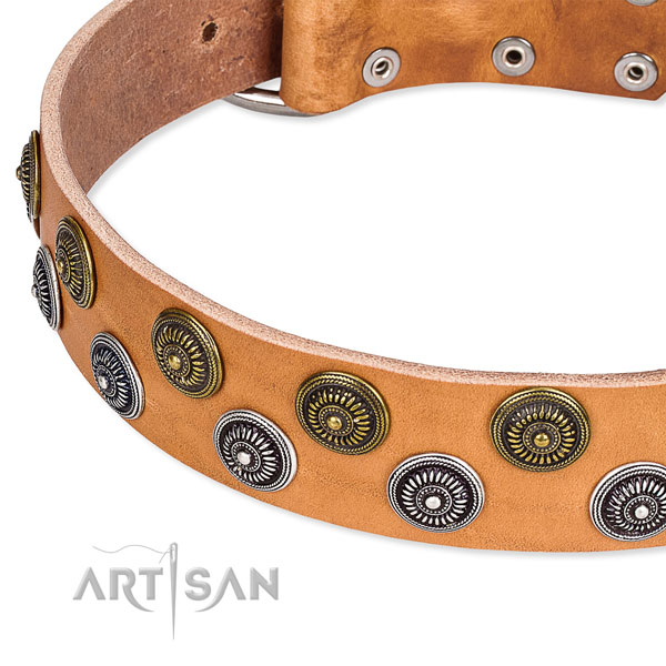 Handcrafted tan leather dog collar with firmly attached studs