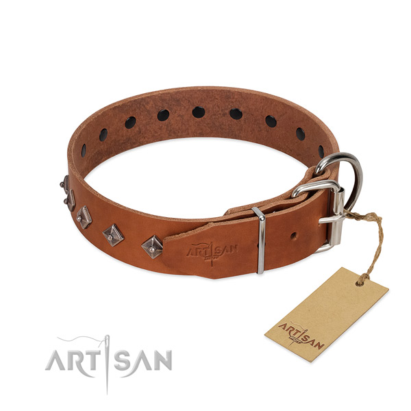 Comfy to wear leather dog collar with polished edges