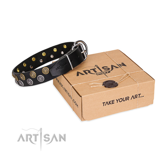 Easy walking decorated black leather dog collar