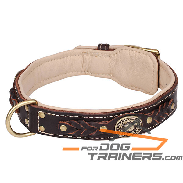 Brown leather dog collar for impressive look
