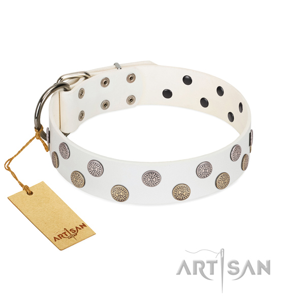 Decorated leather dog collar with exclusive brooches