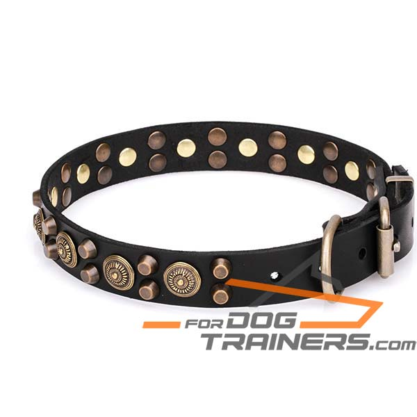 Stylish Dog Collar with Cones