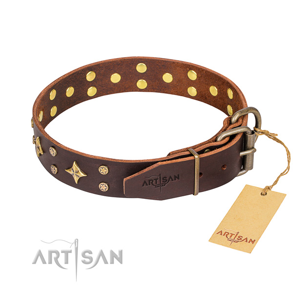 Reliable brown leather dog collar with sturdy hardware