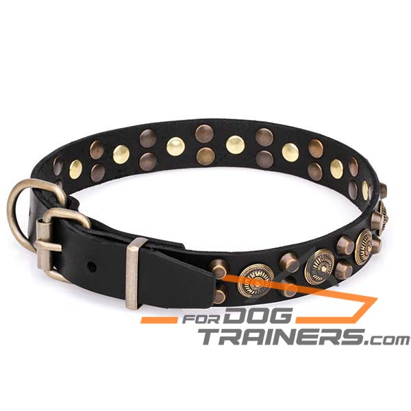 Stylish Dog Collar with Strong Hardware