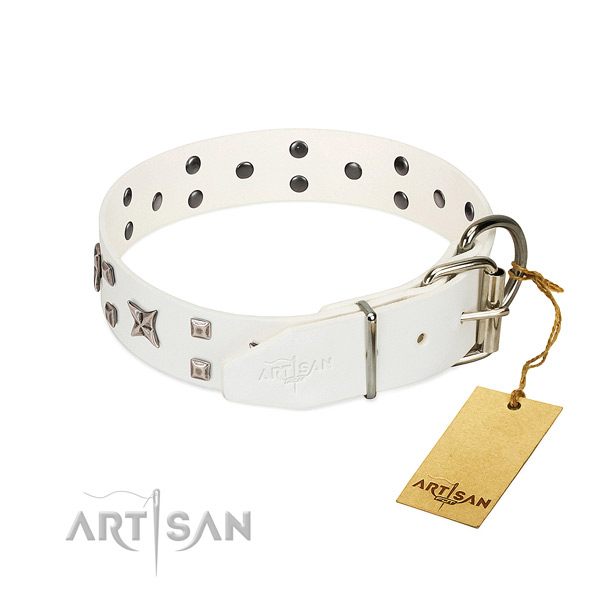 Handselected genuine leather dog collar with strong fittings