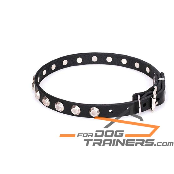 Leather dog collar with sturdy hardware