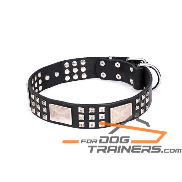 Sturdy Leather Dog Collar with Buckle and D-ring