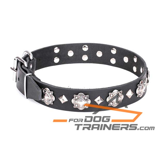 Reinforced leather dog collar with rivets