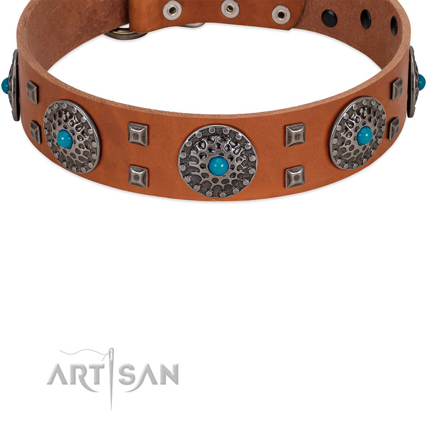 Leather dog collar with silver-like shields and studs