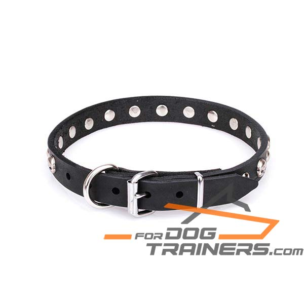 Leather dog collar for reliable use