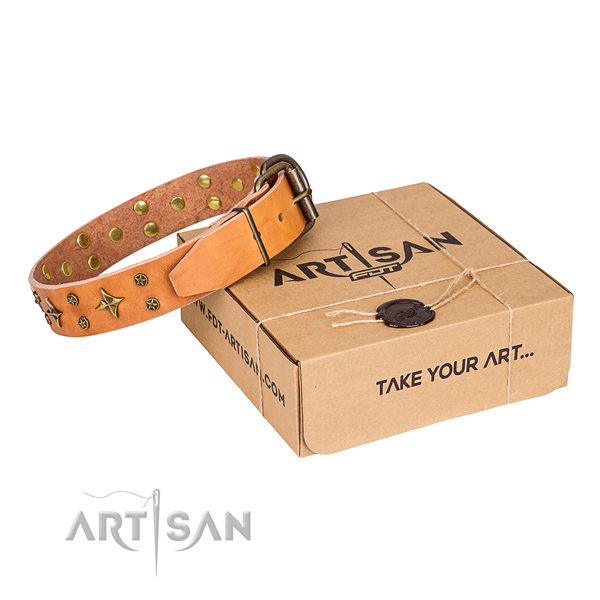 Elaborate tan leather dog collar with decorations