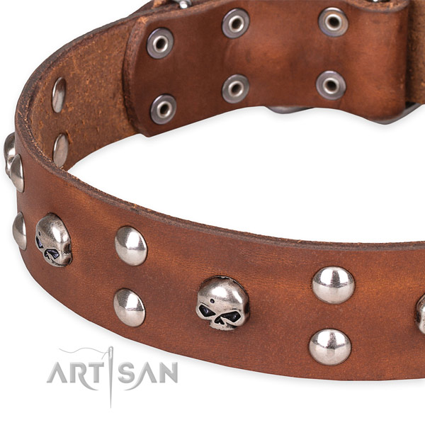 Resistant tan leather dog collar with buckle and D-ring