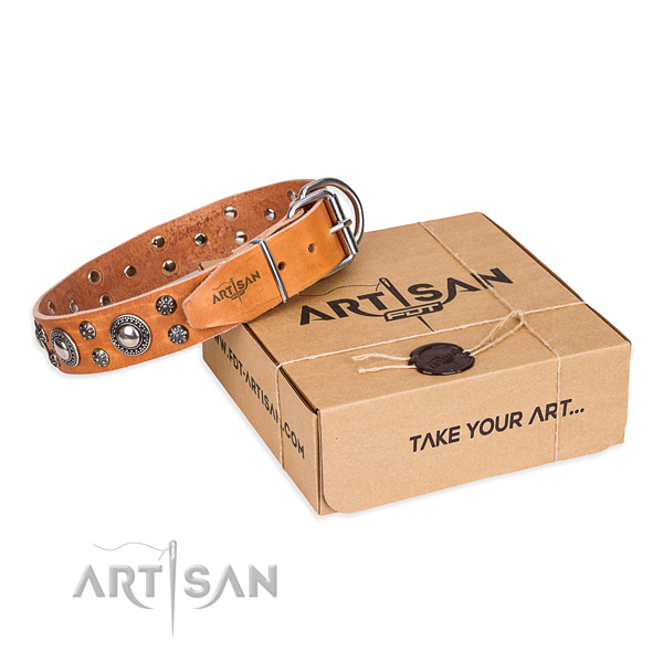 Tan leather dog collar made for stylish look