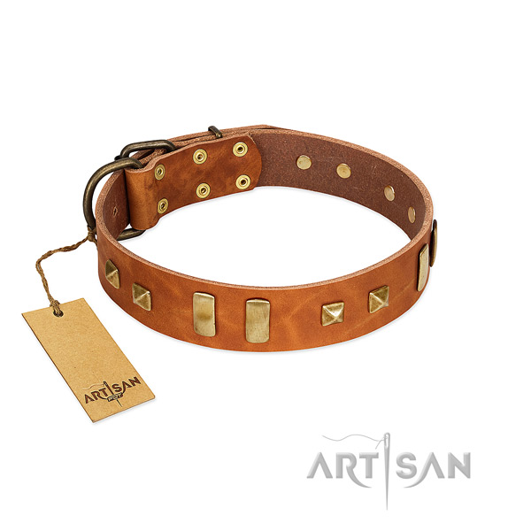 Designer tan leather dog collar with old bronze-like decorations