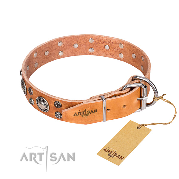 Adorned tan leather dog collar with decorations