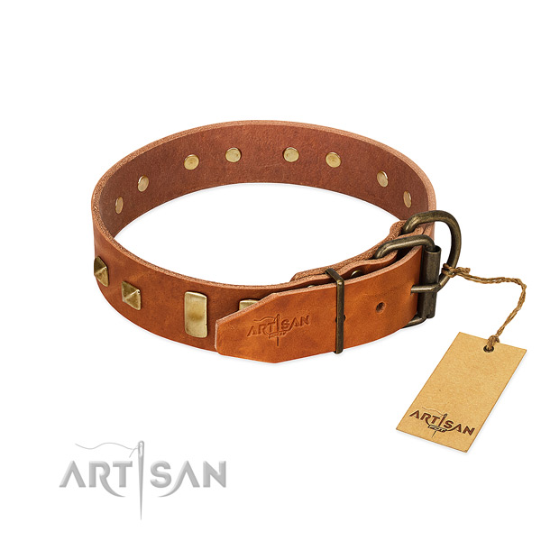 Long-servicing tan leather dog collar with durable fittings