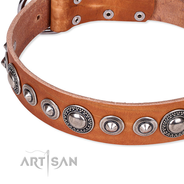 Tan leather dog collar with silver-like plated decorations