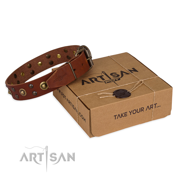 Tan leather dog collar for daily activities