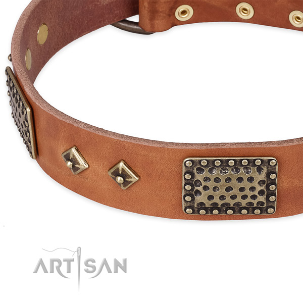 Tan leather dog collar with riveted hardware