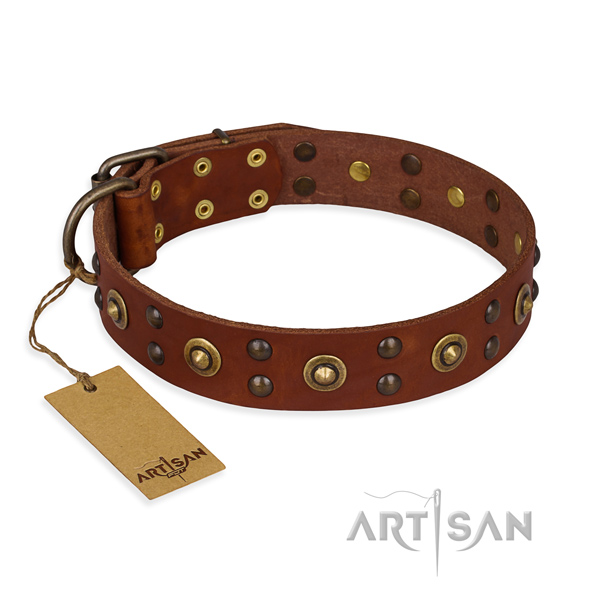 Tan leather dog collar with luxurious decorations