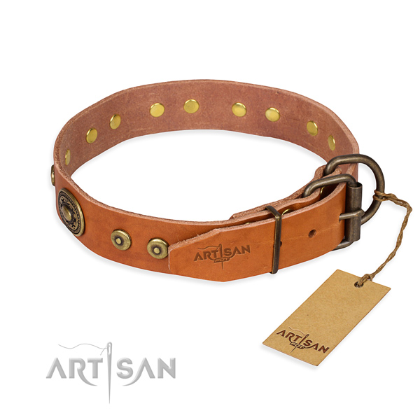 Tan leather dog collar reliable in use