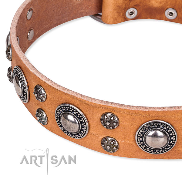 Tan leather dog collar with smooth surface